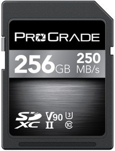 ProGradeDigital_SDXCV90_256GB_700