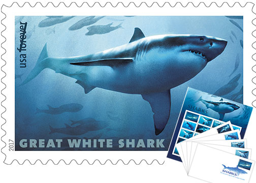 USPS Sharks Forever Stamps Based on Underwater Photo - Digital
