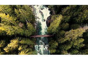 DJI-Pond5-Aerial-Collection