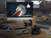 Datacolor-Spyder-Lifestyle-Banner