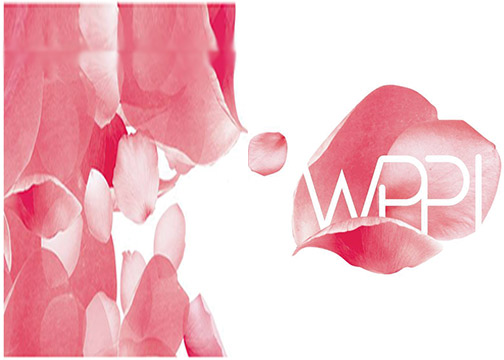WPPI-2019-BannerWeb